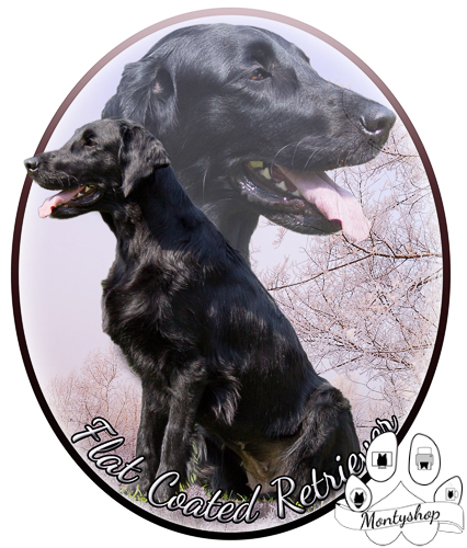Flat coated retriever č.4 s textem