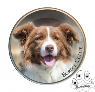 Border collie kulatá č.1 s textem